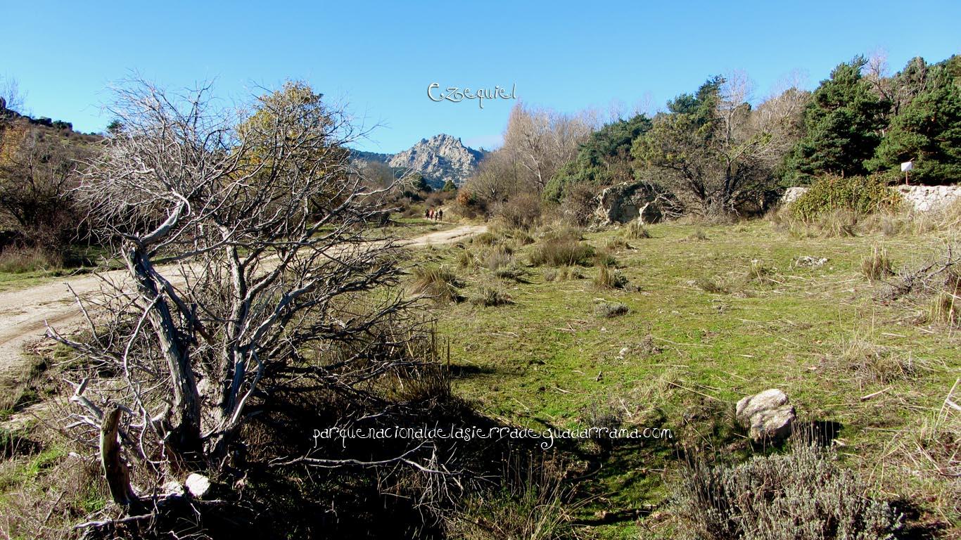 Ruta por las chorreras de San Blas en la zona de la Najarra de Miraflores de la Sierra 11